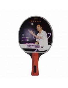 Paleta Ping Pong Sensei 5 estrellas uso avanzado